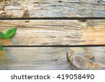 eco leaves on wooden background.... | Shutterstock . vector #419058490