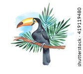toucan on branch. watercolor... | Shutterstock . vector #419119480