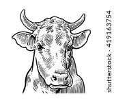 cows head. hand drawn in a... | Shutterstock .eps vector #419163754