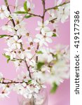beautiful spring flowers at... | Shutterstock . vector #419177386