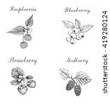 blueberries  raspberries ... | Shutterstock .eps vector #419280124