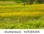 spring and nature | Shutterstock . vector #419284204