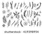 hand sketched vector vintage... | Shutterstock .eps vector #419398954