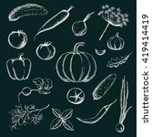 set of hand drawn vegetables.... | Shutterstock .eps vector #419414419