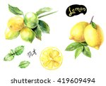 lemon and mint watercolor... | Shutterstock . vector #419609494