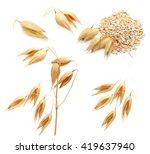 oat ears of grain and bran... | Shutterstock . vector #419637940