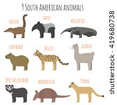 Vector Set Of South American...