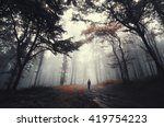 forest road with man | Shutterstock . vector #419754223