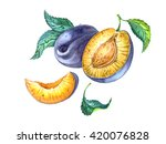 group of plums with leaves.... | Shutterstock . vector #420076828