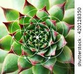 Illustration Of Spiral...