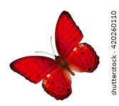 Small photo of Beautiful flying Common Yeoman Butterfly in fancy red color profile on white background