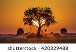 sunset in botswana. africa. an...   Shutterstock . vector #420329488