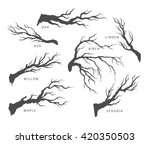 set of dried branches of trees... | Shutterstock .eps vector #420350503