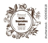vector background   spices ... | Shutterstock .eps vector #420430618