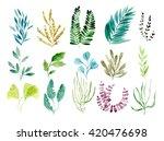 hand drawn watercolor botanical ...   Shutterstock . vector #420476698
