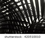 tropical palm leaves with black ... | Shutterstock . vector #420510010