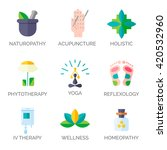 alternative medicine icons. ... | Shutterstock .eps vector #420532960