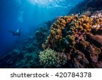 diver swiming along coral reef. ... | Shutterstock . vector #420784378