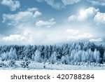 Winter Forest. Winter Landscap...
