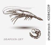 illustration ink seafood shrimp ...   Shutterstock .eps vector #420842239