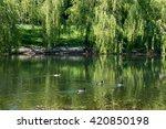 urban small lake in minsk at... | Shutterstock . vector #420850198