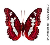Small photo of The beautiful red butterfly, Common Commander butterfly (Moduza procris milonia) in fancy color profile isolated on white background, exotic nature