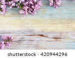 fresh lilac flowers on the... | Shutterstock . vector #420944296