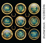 gold and blue badge and labels... | Shutterstock .eps vector #421083346