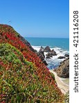 Small photo of California: panoramic view of Pacific Ocean in Bodega Bay on June 13, 2010. Bodega bay, in Sonoma County, is known for being the setting for the 1963 film The Birds directed by Alfred Hitchcock
