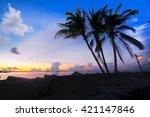 amazing silhouette coconut palm ... | Shutterstock . vector #421147846