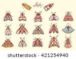 Butterflies. Moths. Hand Drawn...