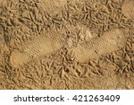 foot tracks | Shutterstock . vector #421263409