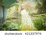 Watering The Vegetable Garden...
