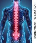 3d illustration of spine   part ... | Shutterstock . vector #421355764