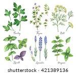 watercolor hand painted set... | Shutterstock . vector #421389136