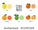 a good set of citrus fruits and ... | Shutterstock .eps vector #421391569
