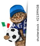 funny cat with soccer ball on... | Shutterstock . vector #421399438