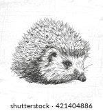 hedgehog  wild animals. see... | Shutterstock .eps vector #421404886