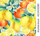 Watercolor Mandarine Orange And ...