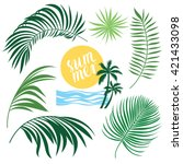tropic collection  tropical... | Shutterstock .eps vector #421433098