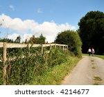 Small photo of lady ramblers walking up an English Country Lane with wild flowers growing along the bank