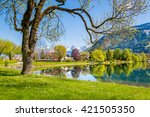 beautiful summer landscape with ... | Shutterstock . vector #421505350