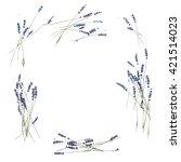 Lavender Flowers. Floral Frame...