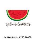 summer poster with watermelon... | Shutterstock .eps vector #421534438