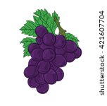 vector art fresh grape on white ... | Shutterstock .eps vector #421607704