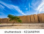 Small photo of The stone desert in mountains of Eilat, Israel. Wood Acacia / Acacia gerrardii / in the Black Canyon