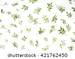 green branches on white... | Shutterstock . vector #421762450