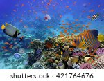 Coral Reef And Tropical Fish I...