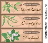 aromatherapy set collection.... | Shutterstock .eps vector #421858270