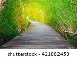 wood bridge in mangrove forest... | Shutterstock . vector #421882453